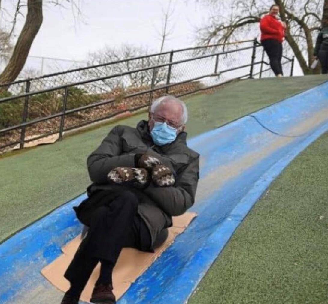 Bernie on Blue Slide