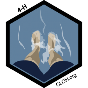 Feet_Wet_Badge